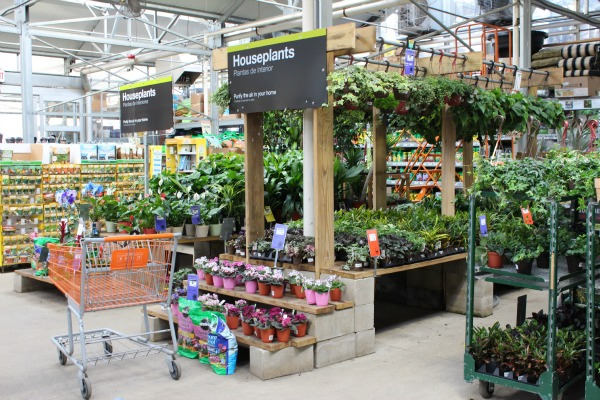 Equipos para cortar la grama en the home depot digin for Home depot jardineria