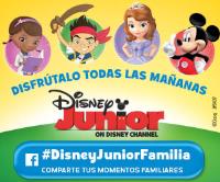 DisneyJr 300x250 logo