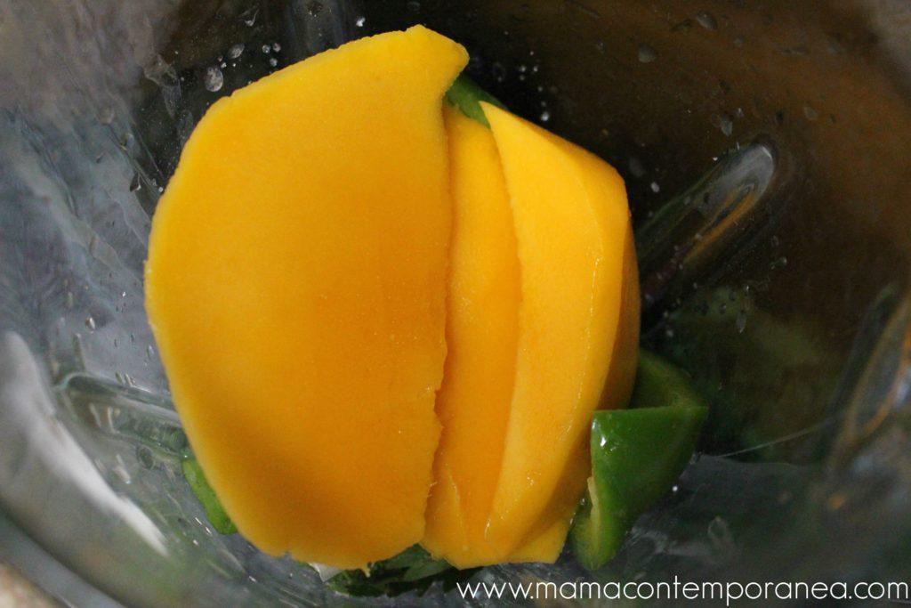 Guasacaca Venezolana de Mango - No Tiene Aguacate