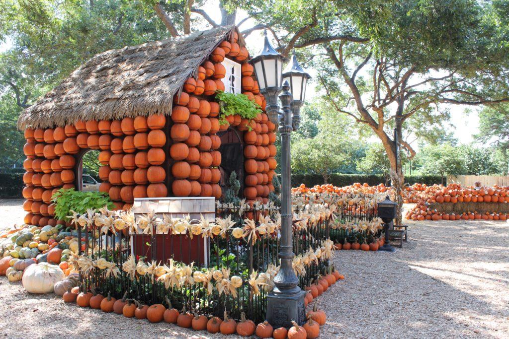 El Otoño en el Dallas Arboretum