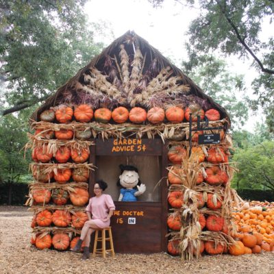 En el Dallas Arboretum: It's the Great Pumpkin, Charlie Brown