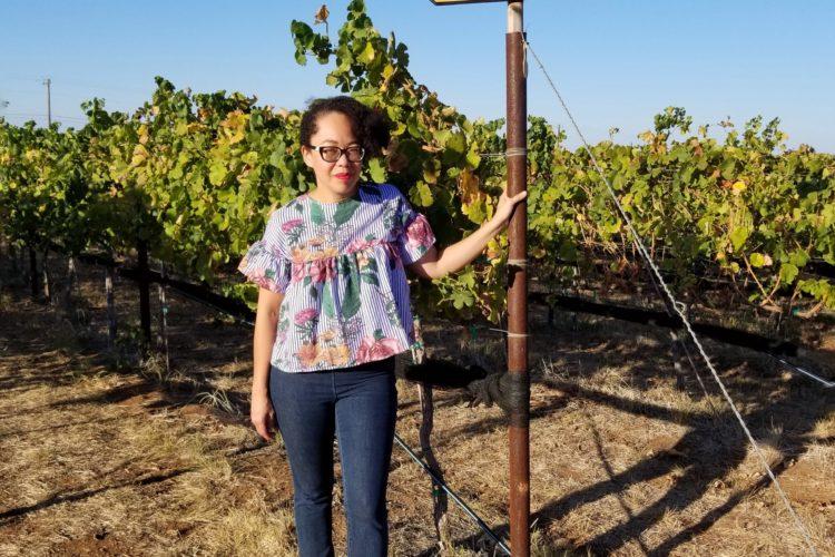 Texas Hill Country- La Ruta del Vino en Texas | Mamá Contemporánea